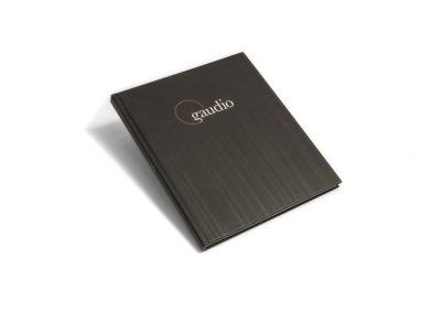 Gaudio Company Profile